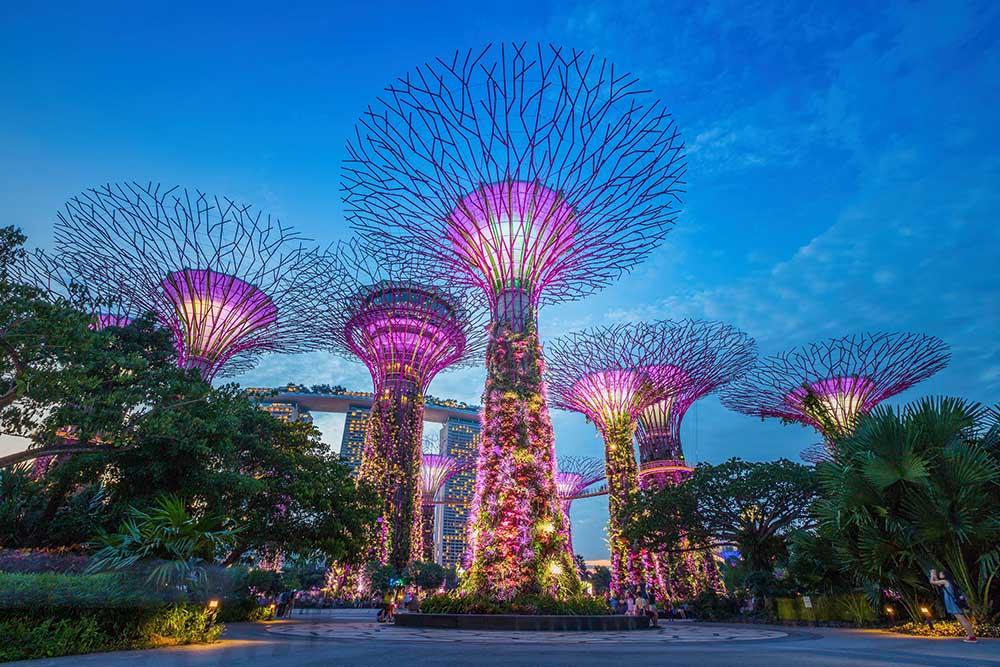 trærne i singapore gardens