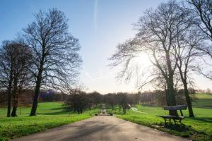 roundhay park i leeds