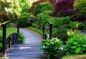Johnston Gardens i aberdeen