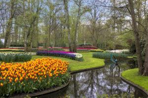 tulp festival amsterdam