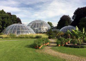 botanisk hage zurich