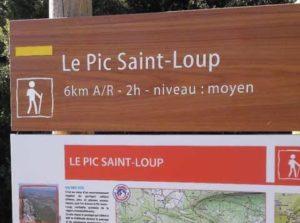 le pic saint-loup montpellier