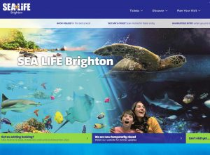 sea life - akvarium i brighton
